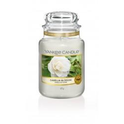 Bougie jarre camellia...
