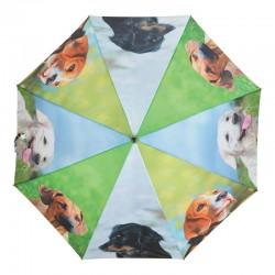 Parapluie chiens