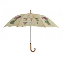Parapluie collection...