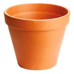 Pot Standard Ancestral...