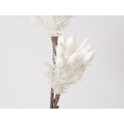 Branche double décorative...