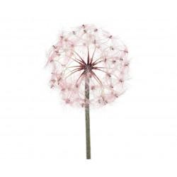Tige pissenlit artif 90cm rose